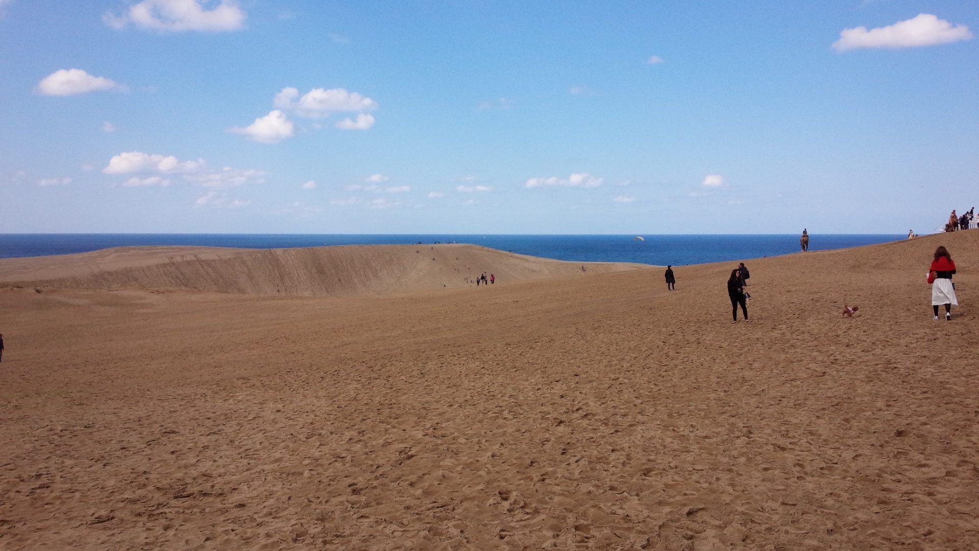 最大 砂丘 日本 の